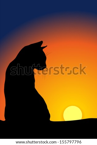 Cat's silhouette against sunset background