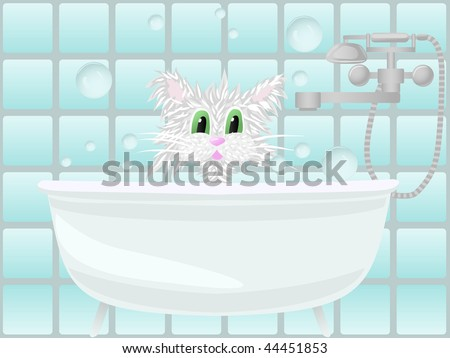 Cat taking bath