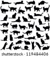 Cats collection - vector silhouette - stock photo