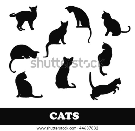 cats silhouette - stock vector