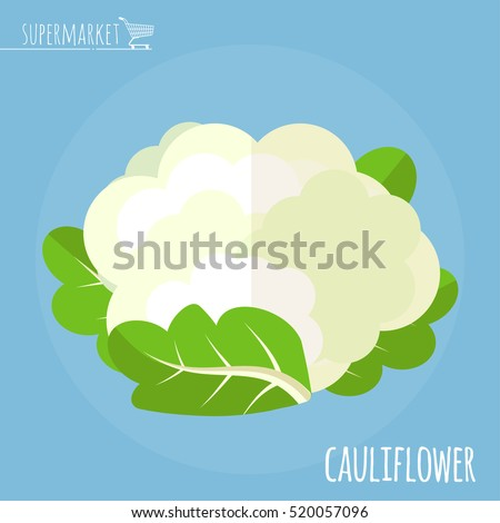 Cauliflower. Long shadow flat design vector icon.