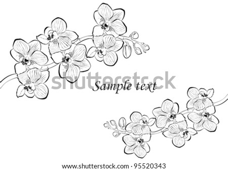 Celebration background with Orchid branch and place for your text. Vector illustration - stock vector