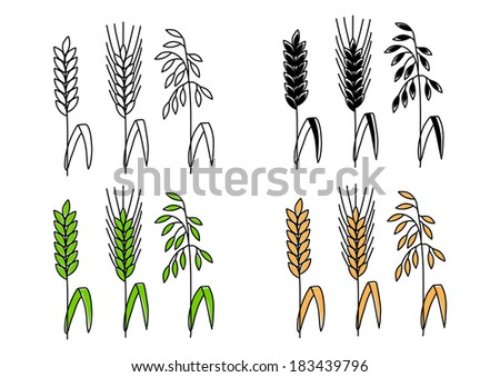 Cereal drawings   - stock vector