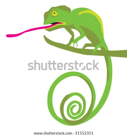 chameleon - stock vector