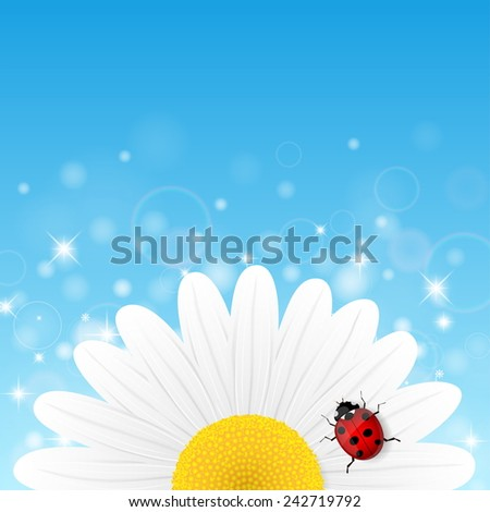 Chamomile flower and ladybird on blue background. Vector illustration.  - stock vector
