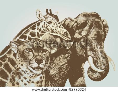 Cheetah giraffe elephant vector - stock vector