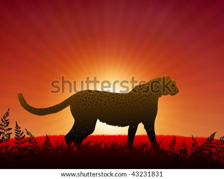 Cheetah on Sunset Background Original Vector Illustration Animals on Sunset Ideal for Wildlife Nature Concepts - stock vector