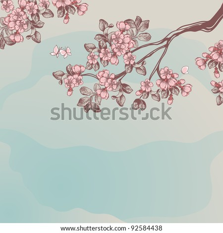 cherry blossom - stock vector