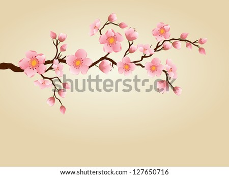 Cherry Blossom branch. Vector - stock vector