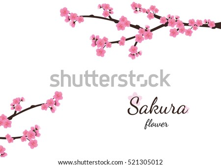 cherry blossom flowers background sakura stock vector 521305012 rh shutterstock com Mulan Cherry Blossom Clip Art Cherry Blossoms Japanese Art