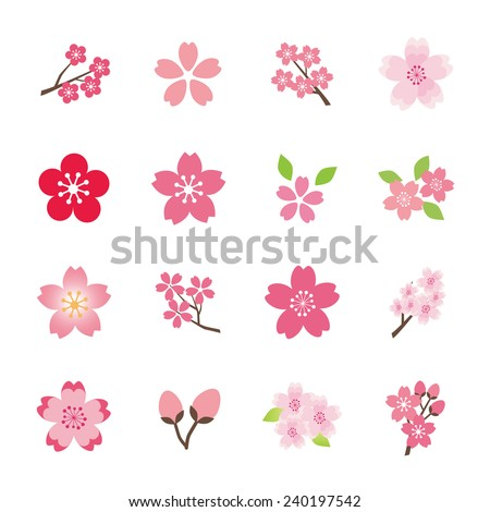 Cherry blossom icon set - stock vector