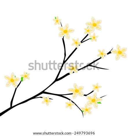 Cherry blossom, spring branch with flowers blooming vector - stock vector