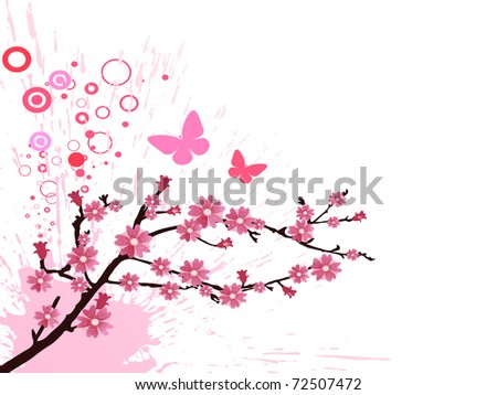 cherry blossom - vector