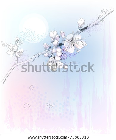 cherry blossoms in full bloom - stock vector