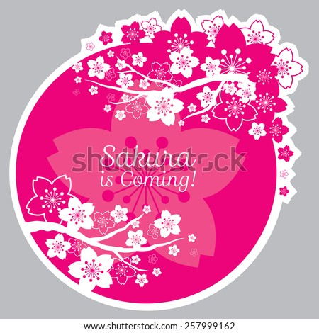 Cherry Blossoms or Sakura flowers Heading and Label - stock vector