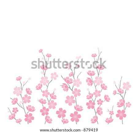 Cherry Blossoms Vector 2 - Graphic 3D rendition of cherry blossoms on white - stock vector