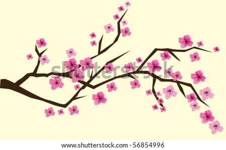 cherry brunch in blossom - stock vector
