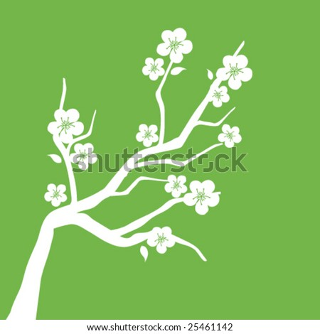 Cherry flowers - stock vector