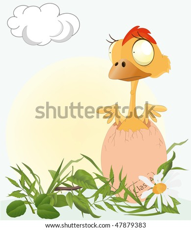 chicken on a meadow - stock vector