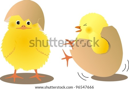 chicks with eggs - stock vector