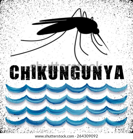 Chikungunya, mosquito, standing water, grunge background, graphic illustration. EPS8 compatible. - stock vector