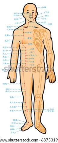 Chinese acupuncture points, with native hieroglyphic names, vector illustration - stock vector