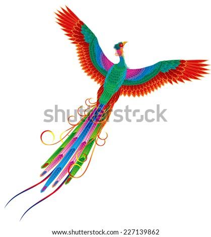 Chinese phoenix. Legend of bird - stock vector