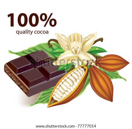 Chocolate vanilla flower and fruit of the cocoa - stock vector