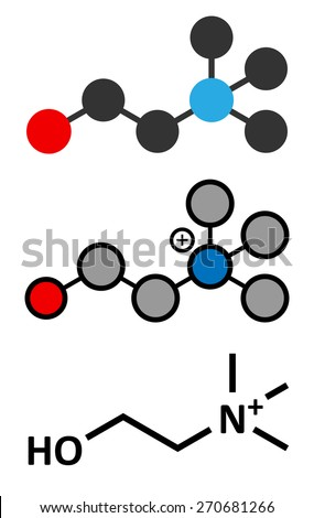 Choline essential nutrient molecule. Stylized 2D renderings and conventional skeletal formula. - stock vector