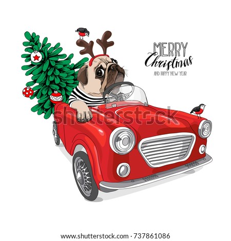 Christmas card. Pug Dog in a striped cardigan and in a Santa's deer mask inside of the red car. Vector illustration.