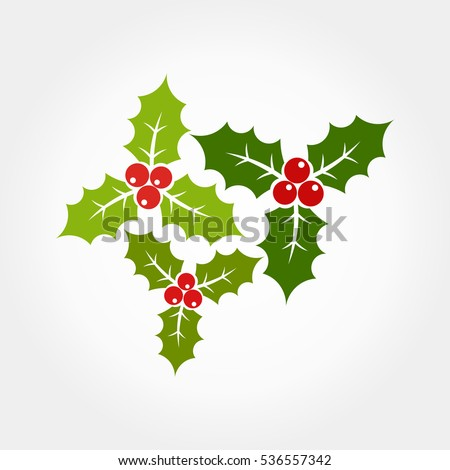 Christmas holly berries icons illustration