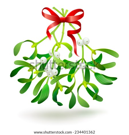 Christmas mistletoe with a red bow. Vector. - stock vector