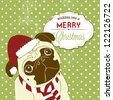 Christmas Pug! Cute little gog in santa hat - stock vector