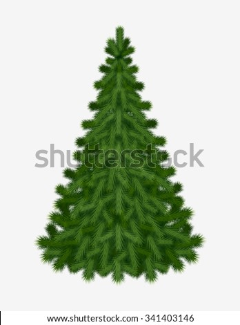 Christmas tree isolated on white background without any decorations for holiday season Christmas and New Year. Vector illustration.