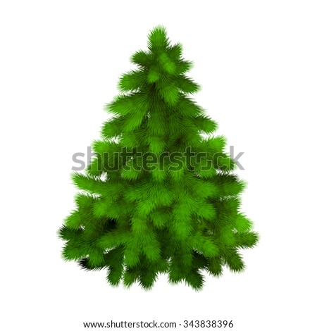 Christmas tree, realistic vector illustration - stock vector
