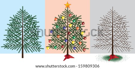 Christmas Tree stages - stock vector