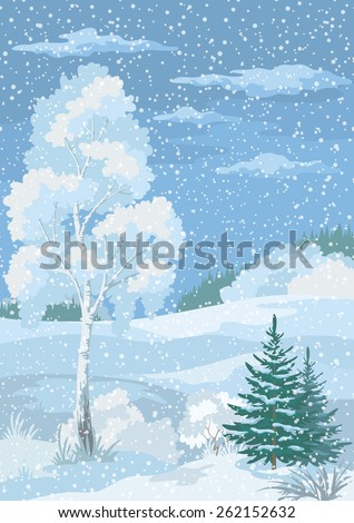 Christmas Winter Forest Landscape with Birch, Firs Trees and Sky with Snow and Clouds. Eps10, Contains Transparencies. Vecto
