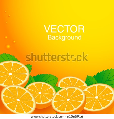 Citrus background with orange and mint leaves. Vector illustration. - stock vector