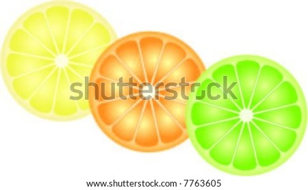 Citrus Fruit Vector (lemon, orange and lime)