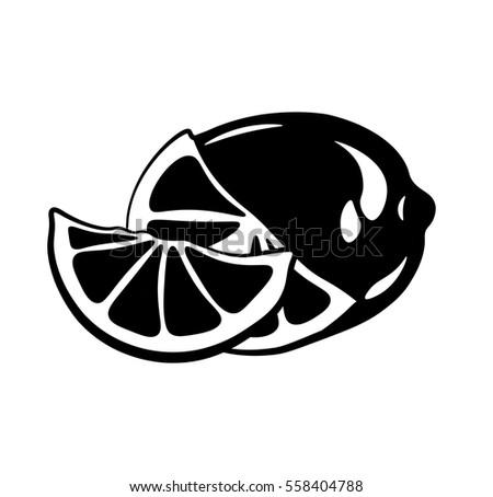 Citrus Slice Lemon Lime Vector Illustration Isolated On White Background