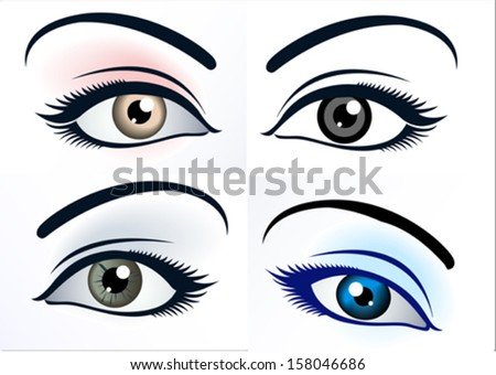 Close up of a female eye - stock vector