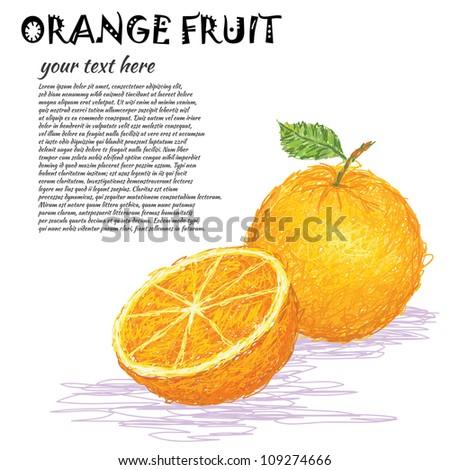 closeup illustration of a fresh orange fruit whole and half sliced. - stock vector