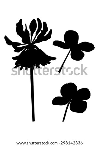 Clover flower with cloverleaf - black silhouette - vector - stock vector