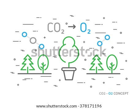 CO2 (carbon dioxide) to O2 (oxygen) colorful linear vector illustration with trees, forest, plant, atom, molecule. Natural (ecology) oxygen creative graphic concept. Natural eco oxygen process.  - stock vector