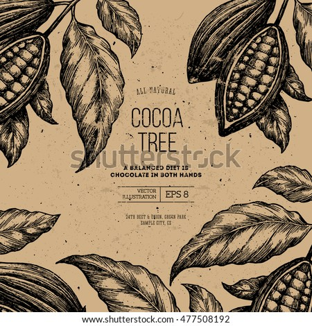 Cocoa bean tree design template. Engraved style illustration. Chocolate cocoa beans. Vector illustration
