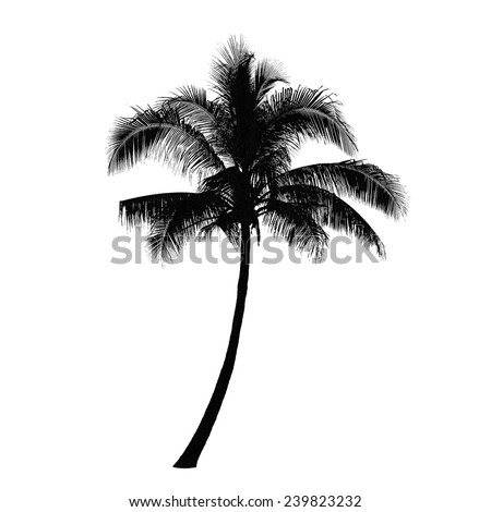 Coconut palm tree silhouette, Vector - stock vector