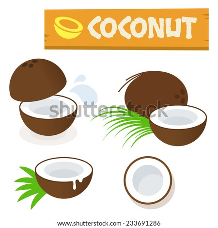Coconut vector flat simple minimal icon illustration isolated on white