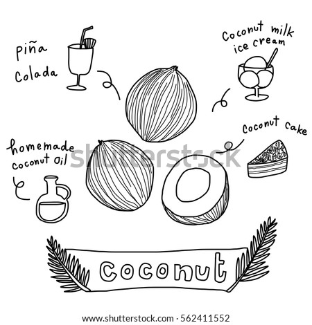 Coconuts with various coconut dish ideas and benefits such as pina colada cocktail, coconut cake, coconut milk ice cream, handmade coconut oil. Vector illustration with doodle style.
