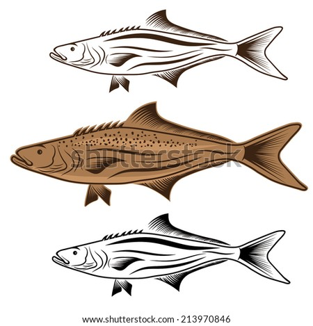 cod fish vector design template - stock vector