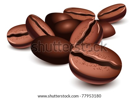 Coffee beans over a white background - stock vector